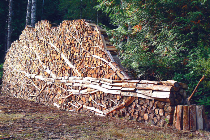 Alastair Heseltine woodpile2