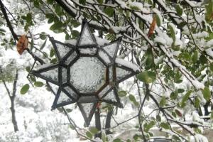 Come into the snowy garden
