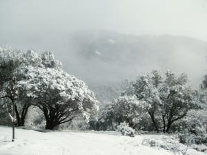 Peckinpah Mountain shows a bit of itself.