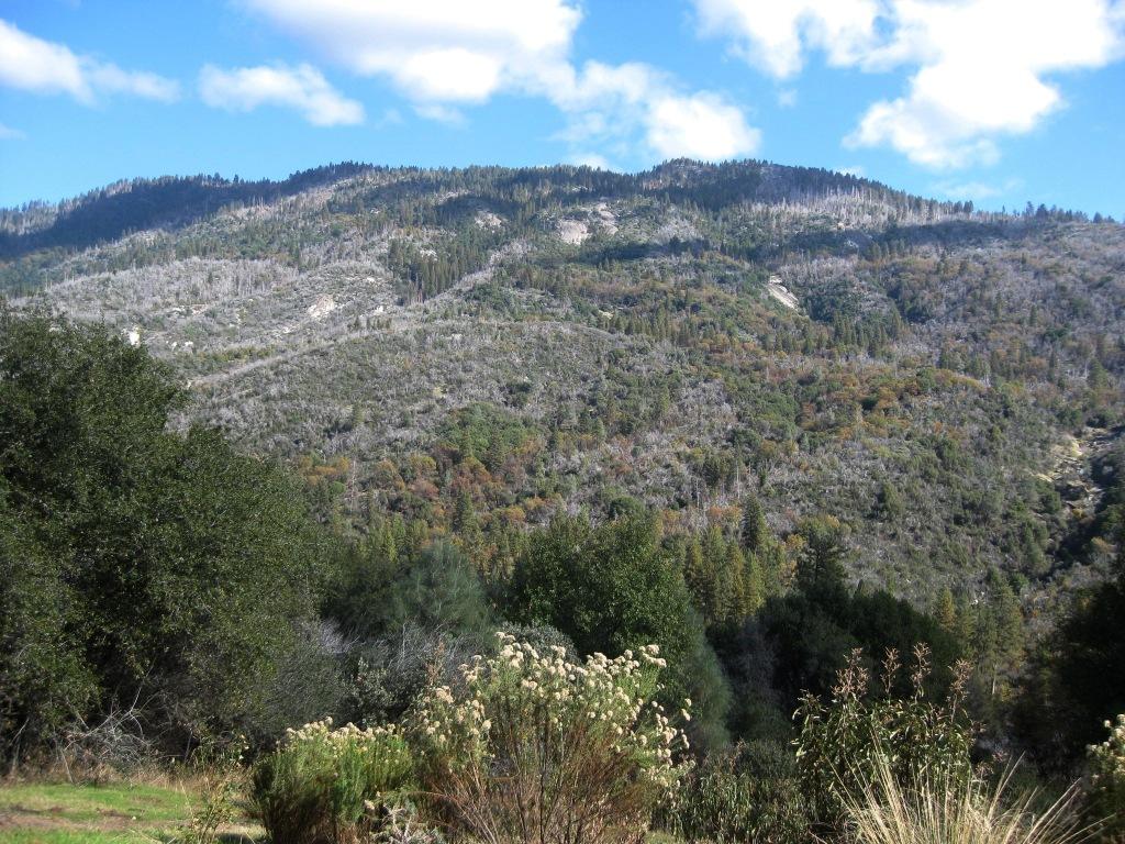 Peckinpah Mountain