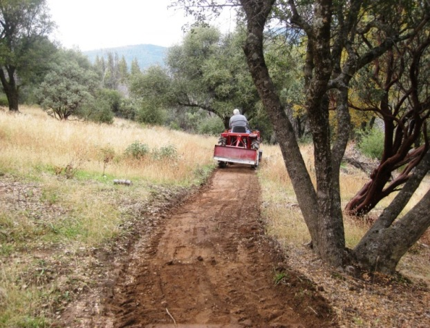 Tractor man, building a path, the lowest level we have accomplished so far. Trees are trimmed up.