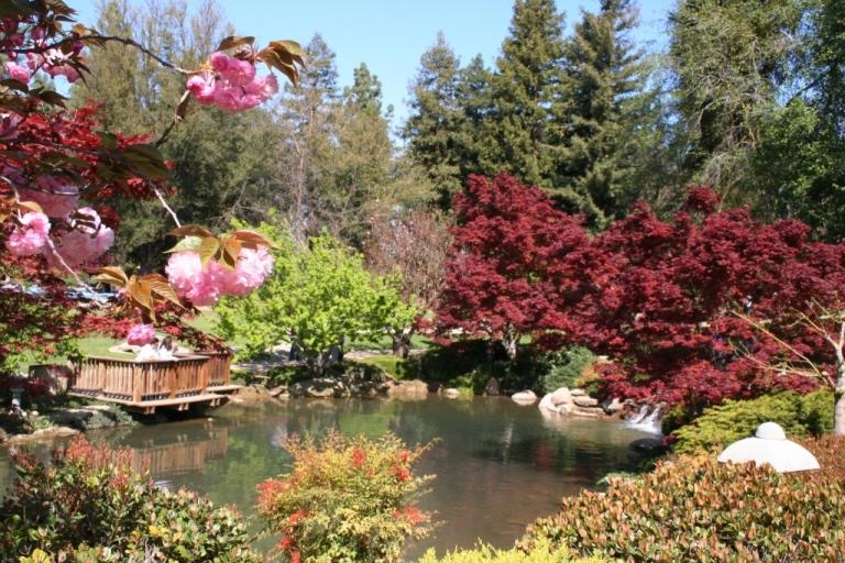 Landscape Fresno