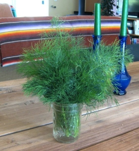 Some dill to cook with and some to dry