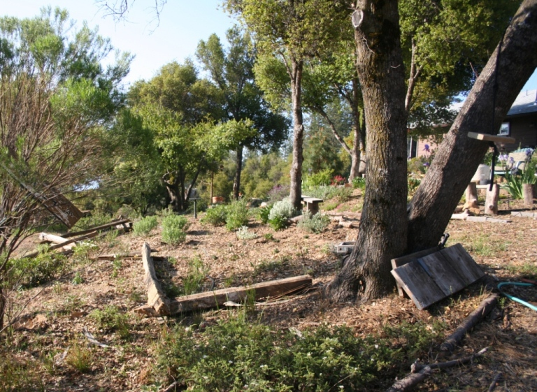 how to prepare a slope for native planting