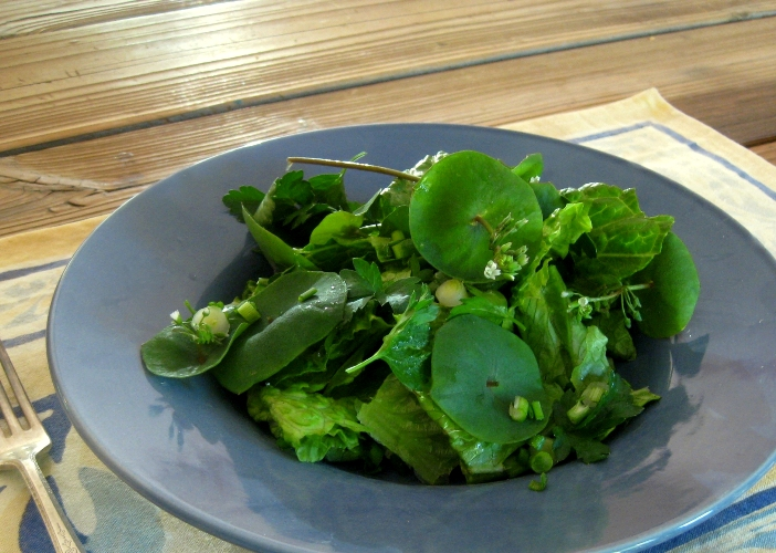 Miner's lettuce is in high demand in fine restaurants and if Hubby like its, we'll have it more.  Why not?