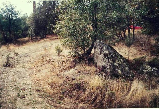 Rock in 2000