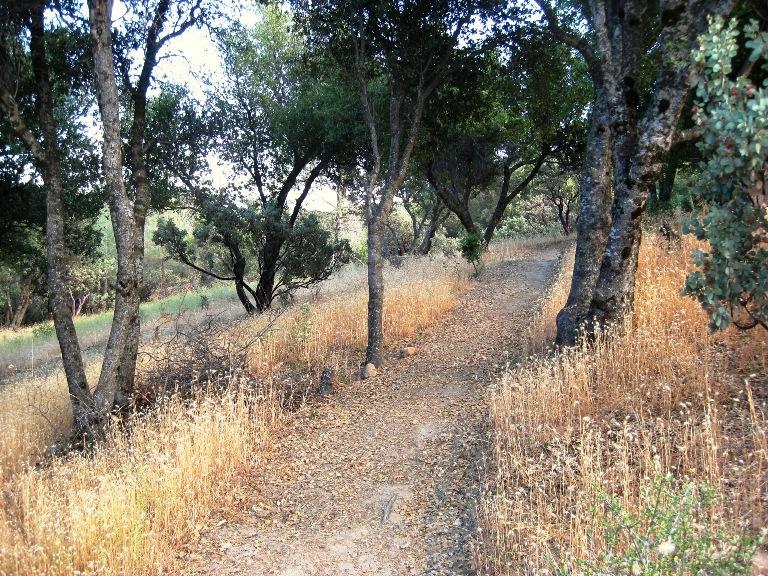 2010 Lower 40 path