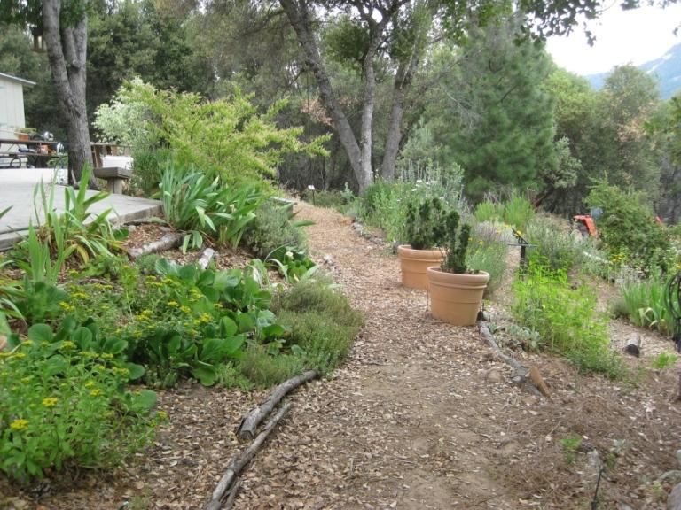 Middle garden path