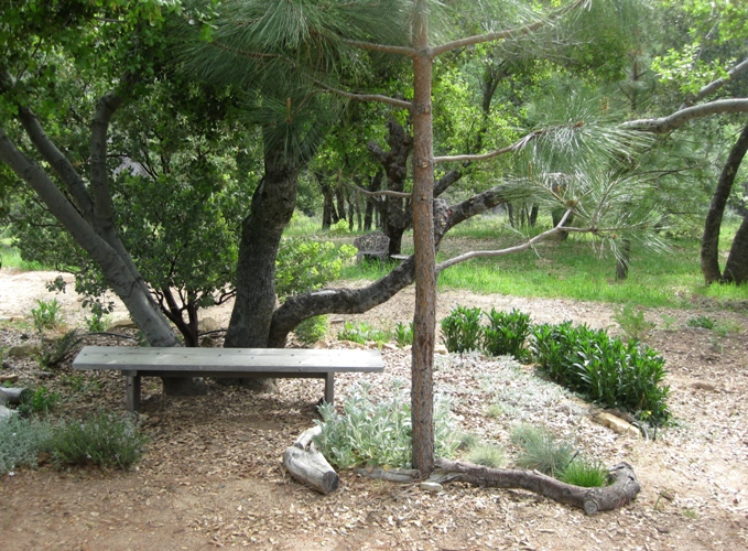 Bench under the oak, another easy 'one-board' bench