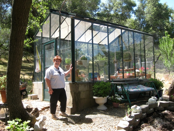 Diane's greenhouse