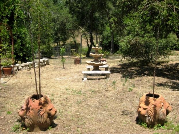 Diane S Greenhouse Dream Sierra Foothill Garden