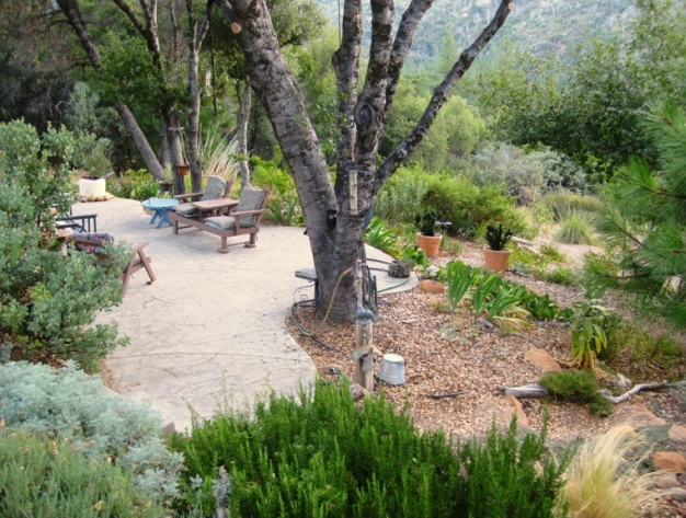 The lower patio in 2011, parallel and just below the upper patio extends space for big groups and is surrounded by low water plants.
