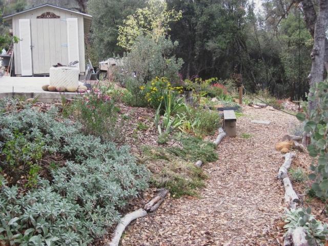 The main garden path runs along below the lower patio