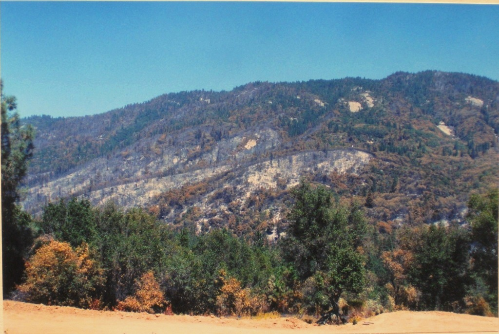 August 2001 On Labor Day weekend a week after the fire, we sat out at night watching spot fire acroos the valley.