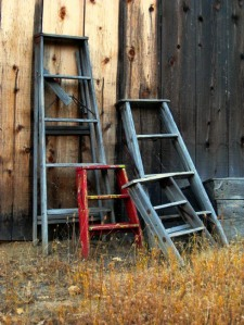 Collection of old ladders