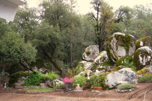 Mary Ann and Larry's rock garden