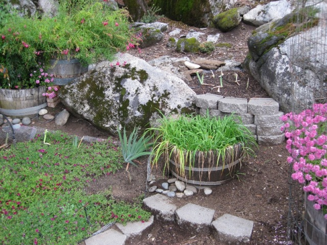 Planting beds between the boulders