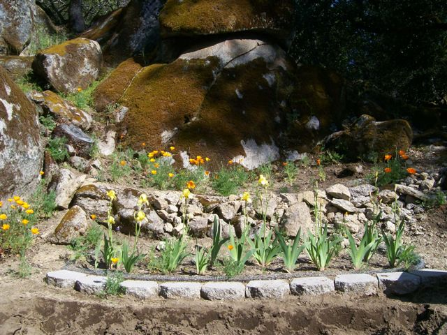 Protected and planted beds