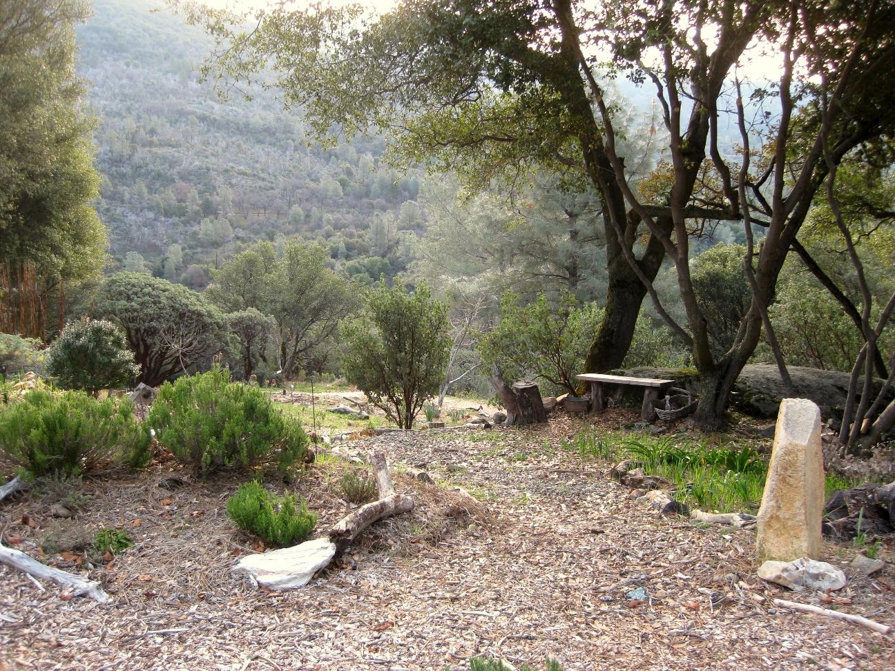 Planting On A Slope Hillside Landscaping