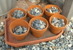 Gravel in pots