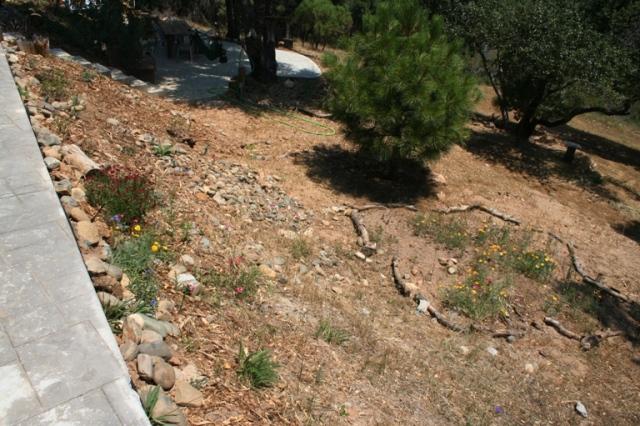 2006-6 Back slope