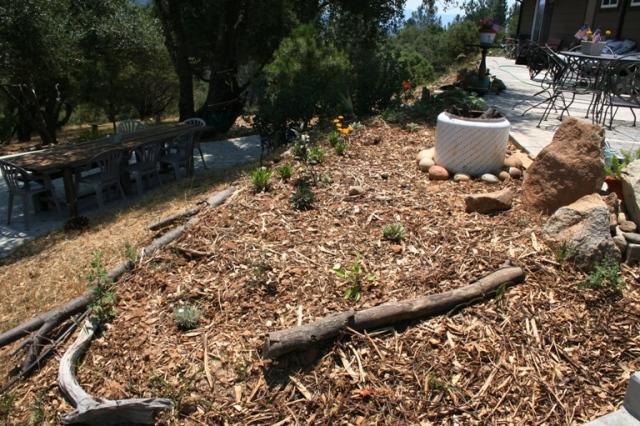 2006-6 Patio garden