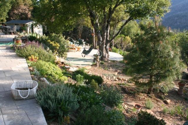 2008-4 Back garden slope