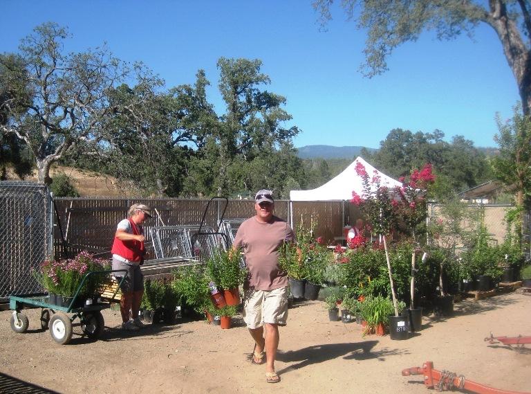 Tim loads plants as Genell prepares them